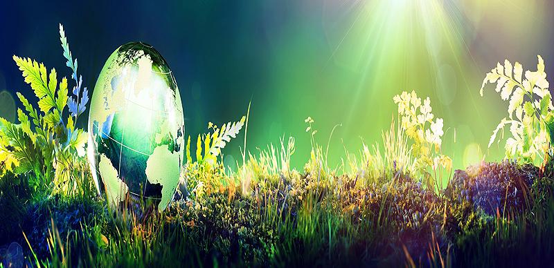 Jornada Informativa sobre Reto 2 'Bioeconomía' y Reto 5 'Acción por el Clima, Medio Ambiente, Eficiencia de Recursos y Materias Primas' dentro de Horizonte 2020
