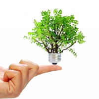 5 de Marzo: Día Mundial de la eficiencia energética