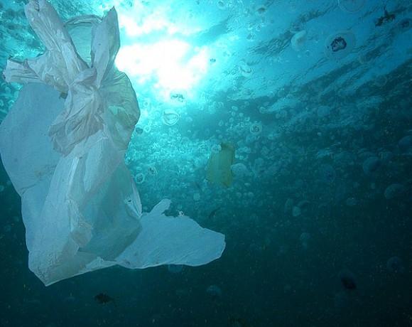 3 de julio, Día Internacional Libre de Bolsas de Plástico, España tiene aún mucho que hacer